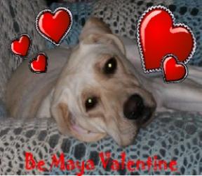 Be Maya Valentine
