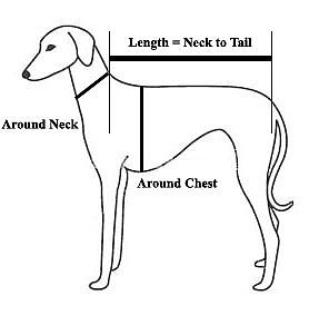 Measure for a Dog Life Jacket