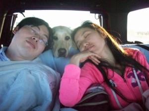 Sha Sha Jinbo and My Dog Maya