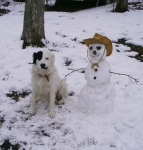 Rocky and the Snowman2