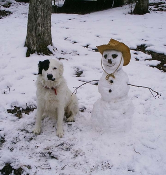 Rocky and the Snowman 2
