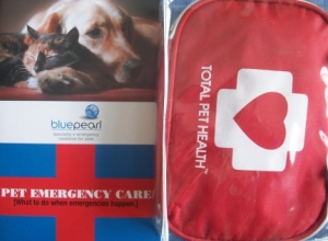 I keep these in my car along with pet identification cards with vet info, a blanket, water, and extra leashes.