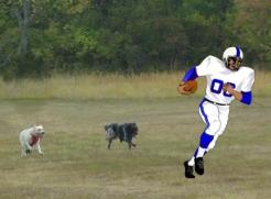 Maya & Pierson tackling football player for Super Dog Sunday.