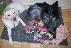 Blog Paws Winnings 002