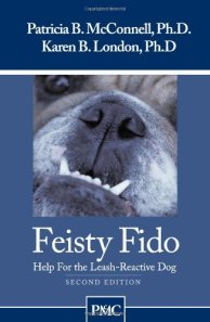 Feisty Fido book cover