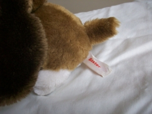 Tag from the Baxter Stuffed Dog