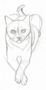 Deuce Sketch One