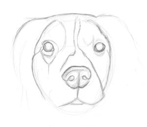 Mos Sketch One