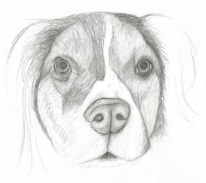 Final Mos Sketch.