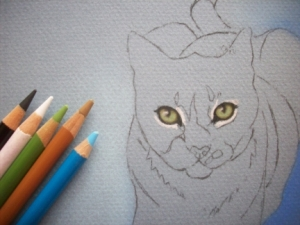 Duece Cat Eyes in Pastel