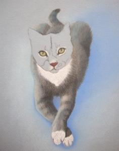 Duece the Cat Art 1