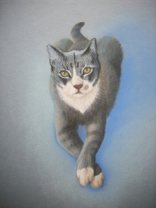 Duece the Cat Art 2