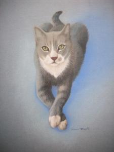Deuce the Cat Art 3