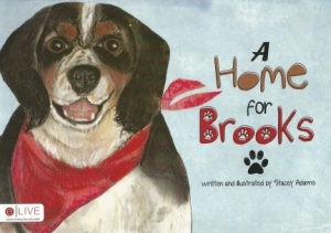 A Home for Brooks