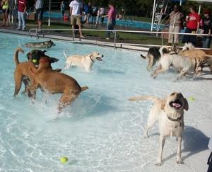 Maya Swimming at Public Pool
