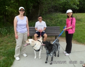 People and Dogs in Park at Bench