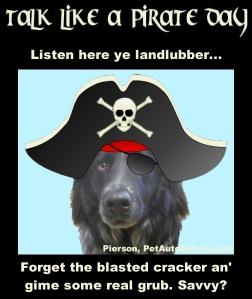 Talk Like a Pirate Day - Pierson Pirate Cracker