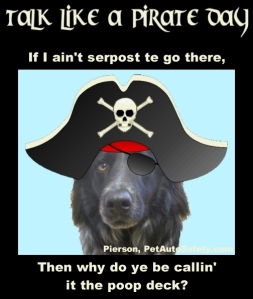 Talk Like a Pirate Day - Pierson Pirate Poop