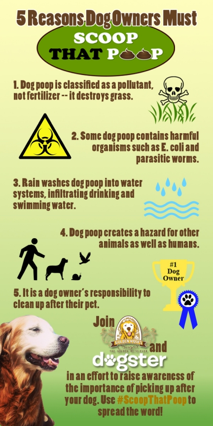 Scoop That Poop Infographic