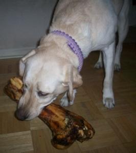 Big Bone Jones Natural Chews 003