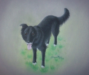 Final Art Work of Zipper the Dog