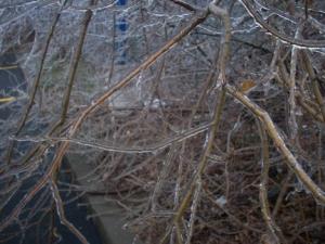 Oklahoma Ice Storm 002