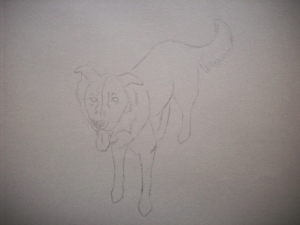 Zipper the Dog Drawing 002