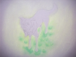 Zipper the Dog Drawing 005