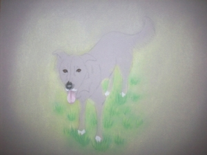Zipper the Dog Drawing 010
