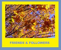 Friends Followers Award