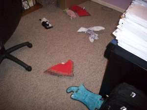 Dog Toys All Over the Floor 001