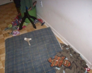 Dog Toys All Over the Floor 002