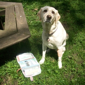 My Dog Maya and Pet First Aid Kit