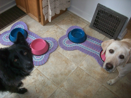 Dogs and New Dog Bowls