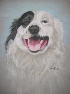 Drawing of Rocky the Dog - Pastel