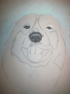 Drawing Rocky the Dog Step 1