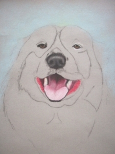 Drawing Rocky the Dog Step 2