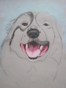 Drawing Rocky the Dog Step 3