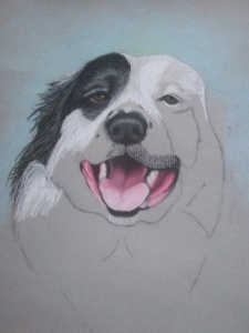 Drawing Rocky the Dog Step 4