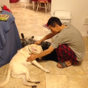 Husband Li Xi and the Dogs