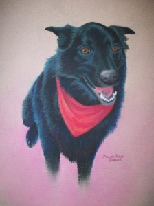 Chow Mix Sephi Artwork Drawn in Pastel